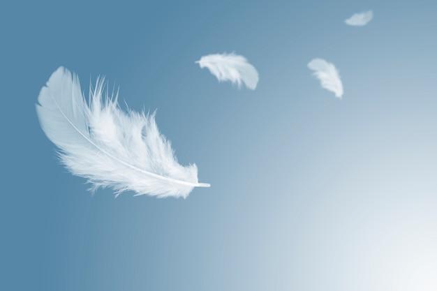 Białe piórko unoszące się w powietrzu.