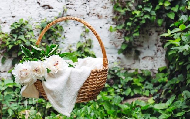 Białe piwonie kwitnący bukiet kwiatów w drewnianym koszu piknikowym na białą kratę na zewnątrz. kosz piknikowy i romantyczny daktylowy z wiosennymi kwiatami w ogrodzie z miejscem na kopię.