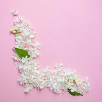 Białe płatki na różowym tle, skopiuj miejsce na tekst. kwiatowy kartkę z życzeniami. zaproszenie na ślub
