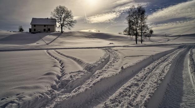 Białe pole pokryte śniegiem w ciągu dnia