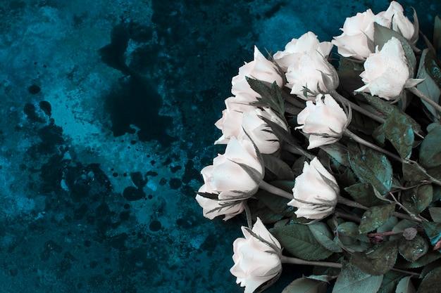 Białe róże i krople wody