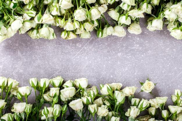 Białe róże na szarym tle. świeże, małe kwiaty