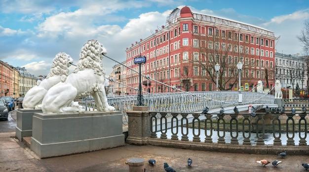 Białe rzeźby lwów na moście lwa nad kanałem gribojedowa w petersburgu i gołębi na parapecie w pochmurny zimowy dzień