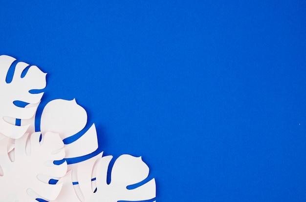 Białe sztuczne liście z ramki w stylu papieru