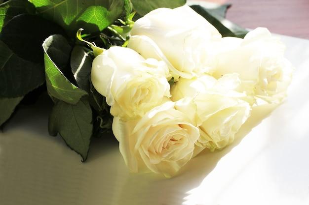 Białe tło róży z bliska