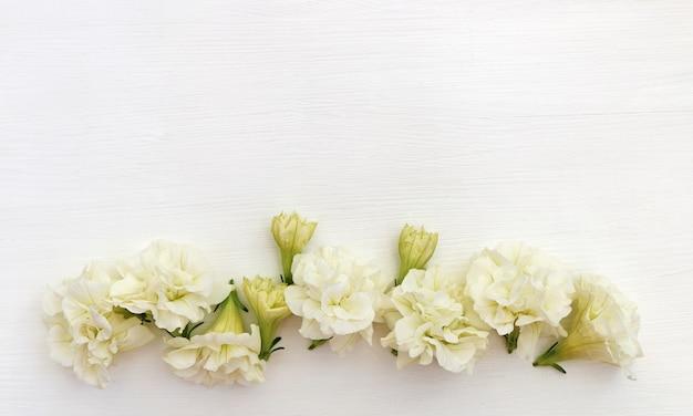 Białe tło z kwiatami