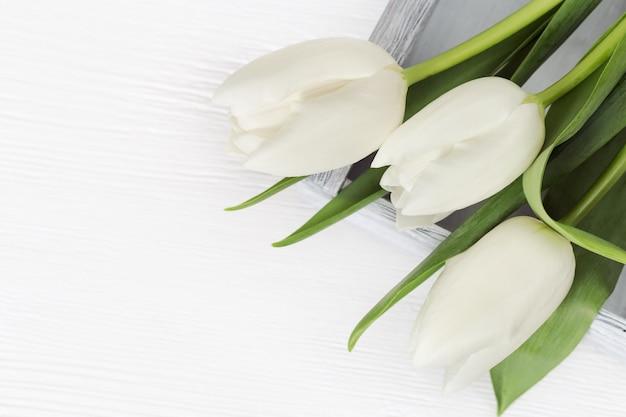 Białe tulipany w lekkim drewnianym pudełku. świezi jaskrawi kwiaty z kopii przestrzenią. widok z góry.