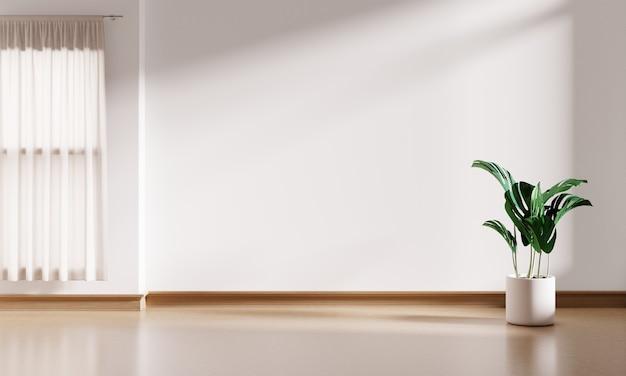 Białe wnętrze pusty pokój tło z doniczką monstera