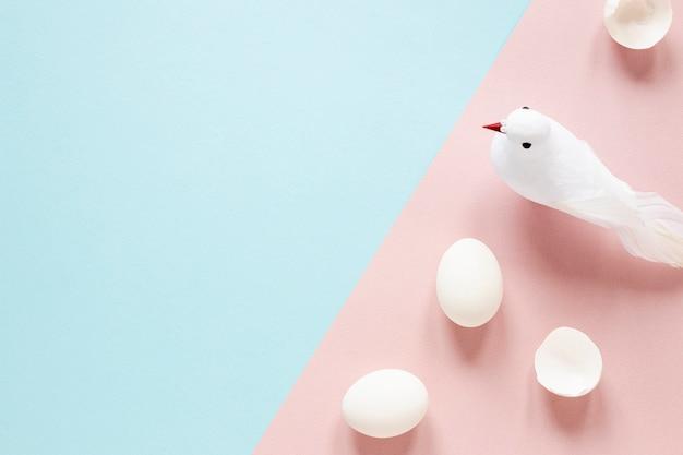 Biali jajka i gołąb na stole