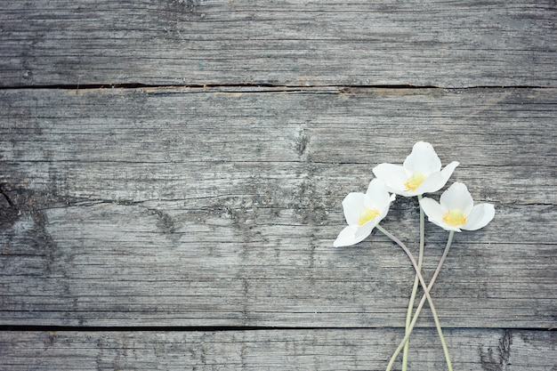 Biali kwiaty na starym drewnianym tle. ogrodowi kwiaty na drewnianym stołowym tle.