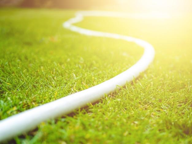 Biali podlewań węże elastyczni na zielonym gazonie. letni dzień. słoneczny
