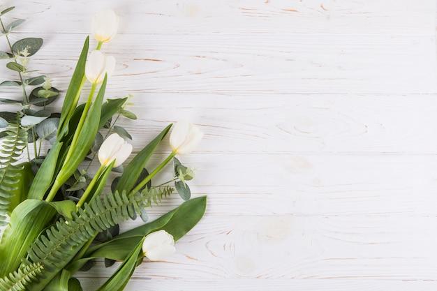 Biali tulipanowi kwiaty z paprocią opuszczają na stole