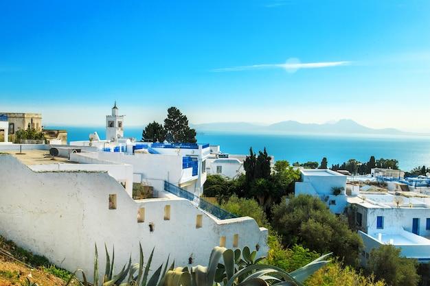 Biało-niebieskie miasto sidi bou said, tunezja. wschodnia bajka z francuskim urokiem.