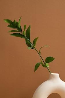 Biały ceramiczny wazon w kształcie pierścienia z zieloną rośliną domową z wieloma liśćmi stojącymi na brązowej lub ścianie pokoju domowego