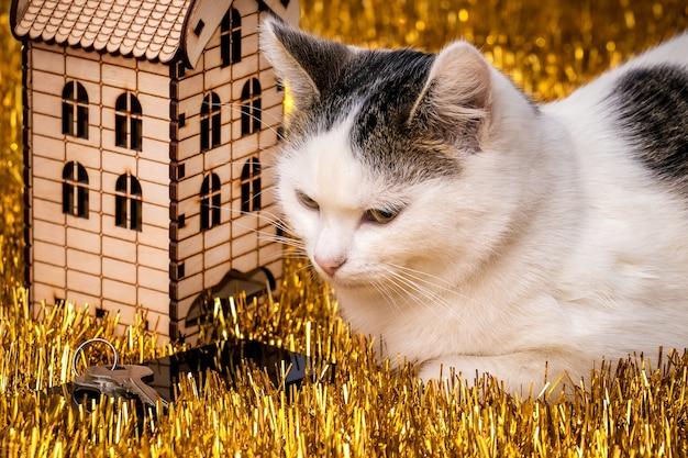 Biały cętkowany kot siedzi w pobliżu drewnianego domku z zabawkami z kluczami