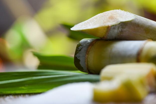 Biały cukier i trzcina cukrowa na drewnianym stole i przyrody