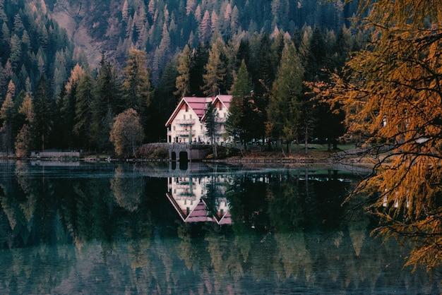 Biały dom otoczony drzewami