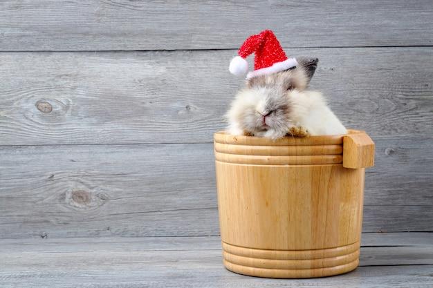 Biały futrzany biały królik, schowany w jasnobrązowej drewnianej beczce na głowie, ubrany w czerwony świąteczny kapelusz. festiwal