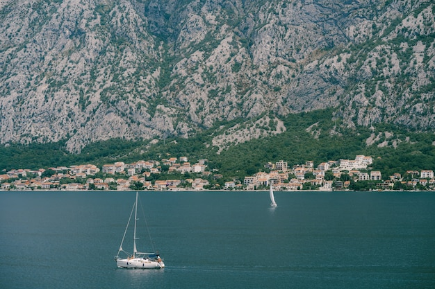 Biały jacht żaglowy pływa po zatoce kotorskiej na tle miasta w górach