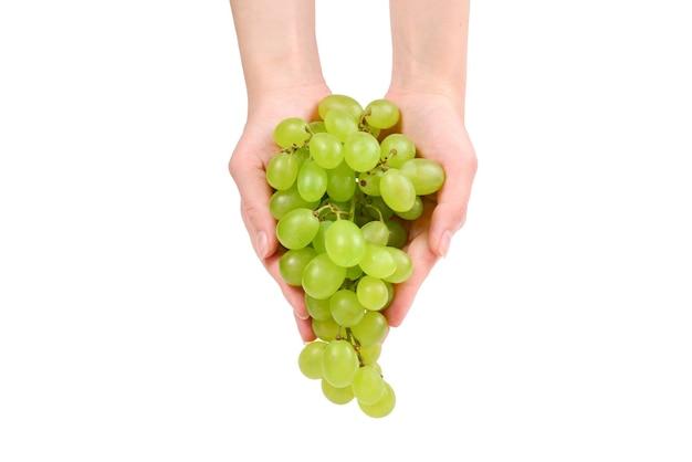 Biały kiść winogron w ręce na białym tle