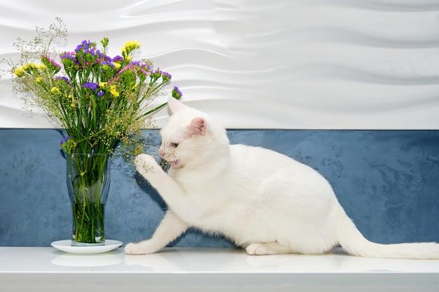 Biały kot bawi się i wącha kwiaty w wazonie.