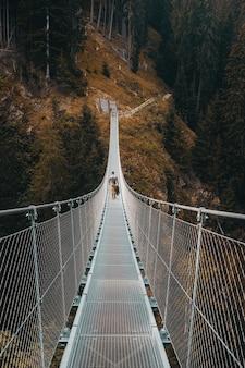 Biały most w lesie