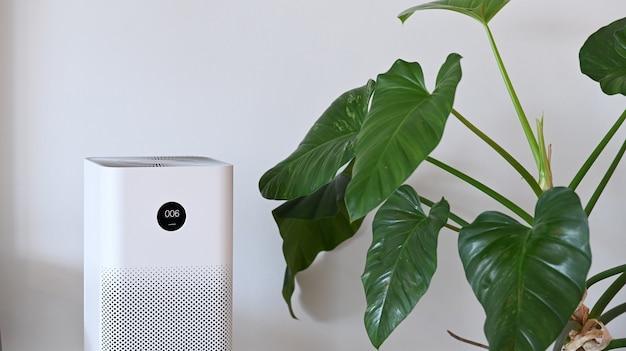 Biały oczyszczacz powietrza i roślina doniczkowa w salonie dla świeżego powietrza i zdrowego życia wellness.