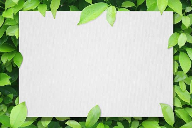 Biały papier artystyczny na zielonym liściu