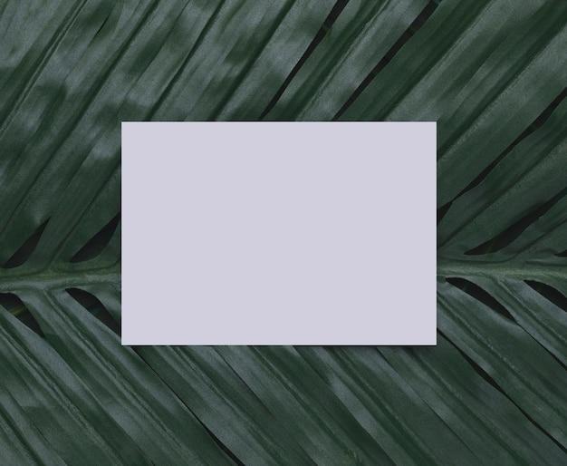 Biały papier na tropikalnej liść kopii przestrzeni