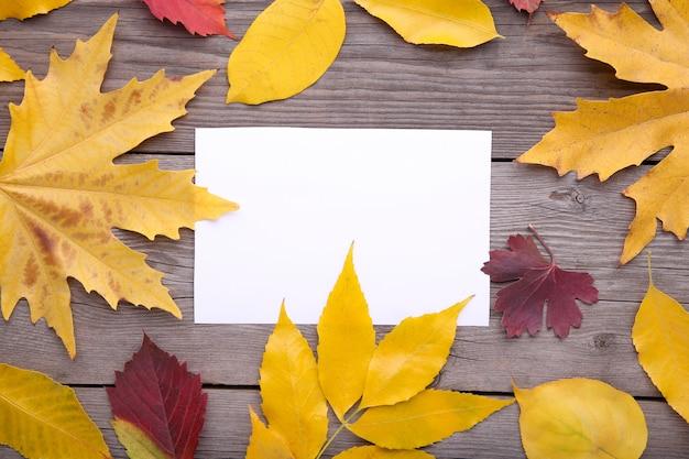 Biały papier z jesiennych liści na stole szary