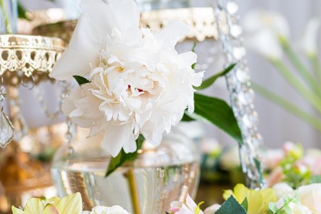 Biały piwonia kwiat z bliska na szklanym słoju.