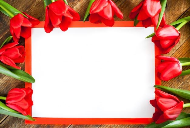 Biały pusty arkusz w czerwonej ramce z miejsca kopiowania i czerwone tulipany wokół niego na drewniane tła.