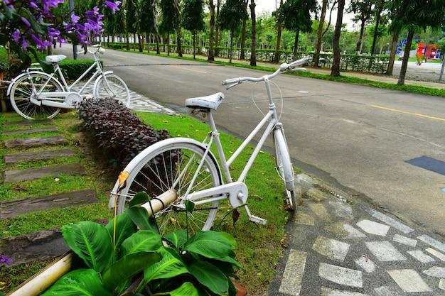 Biały rower w ogrodzie