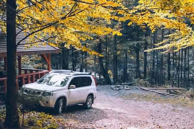 Biały samochód suv w jesiennym lesie w pobliżu miejsca kopiowania altany
