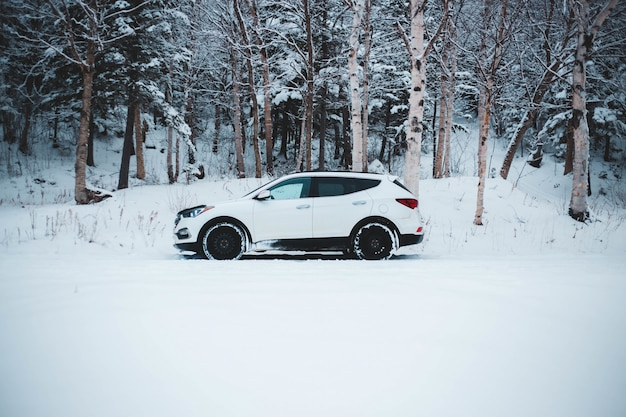 Biały suv na drodze