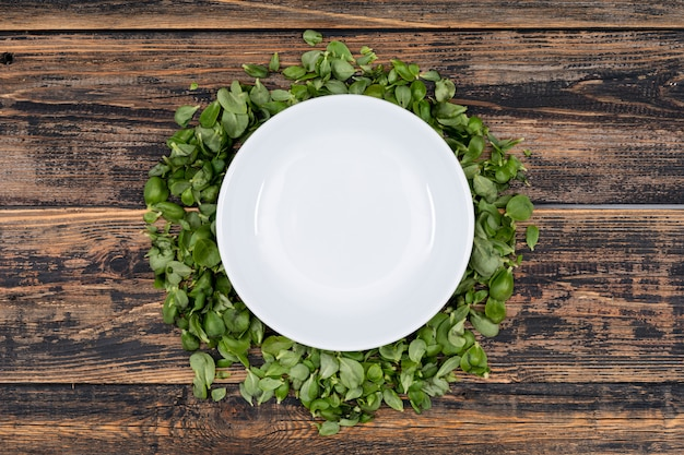 Biały talerz na liściach