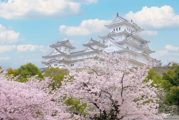 Biały zamek himeji zamek w wiśniowym blooson sakura kwitnący z przodu i błękitne niebo