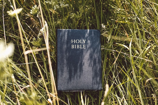 Biblia w zielonej trawie. czytanie biblii. koncepcja wiary, duchowości i religii