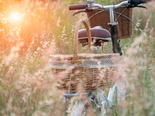 Bicykl z koszem i gitarą kwiaty w łące