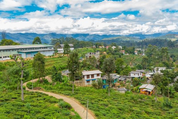 Biedne zniszczone domy mieszkańców wyspy sri lanki. zakwaterowanie w dżungli.