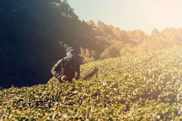 Biegacze. szlak młodych ludzi biegnie po górskiej ścieżce. szlak przygodowy w stylu góralskim.
