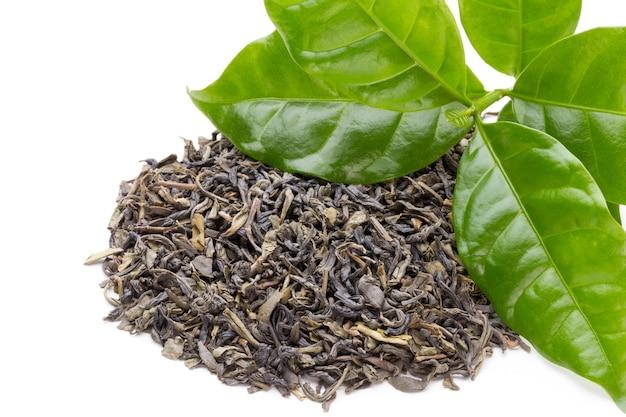 Bio liści zielonej herbaty na białym tle