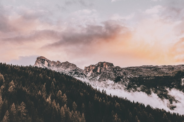Bird's eye of mountain