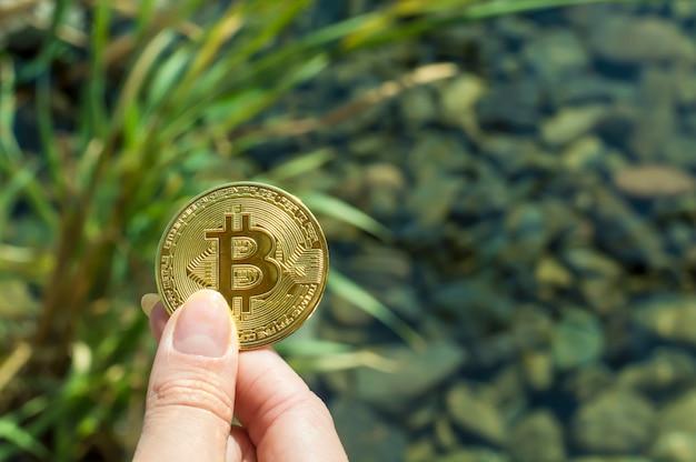 Bitcoin w dłoni dziewczynki na tle jeziora, trawy, kamieni pod wodą. dobrobyt, wzrost, sukces finansowy.
