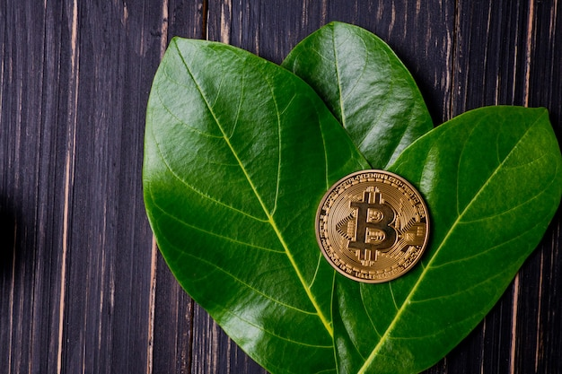 Bitcoin, złoty bitcoin, nowe wirtualne pieniądze