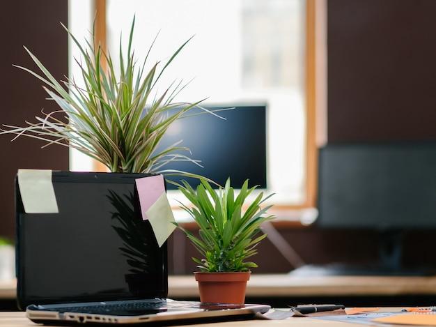 Biurowa przestrzeń robocza. nowoczesne przytulne miejsce pracy. laptop z karteczkami samoprzylepnymi i zielonymi roślinami
