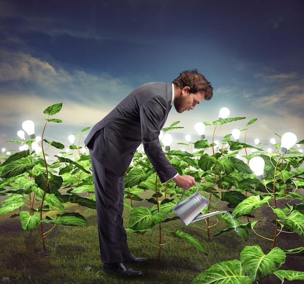 Biznesmen pielęgnuje nowe pomysły