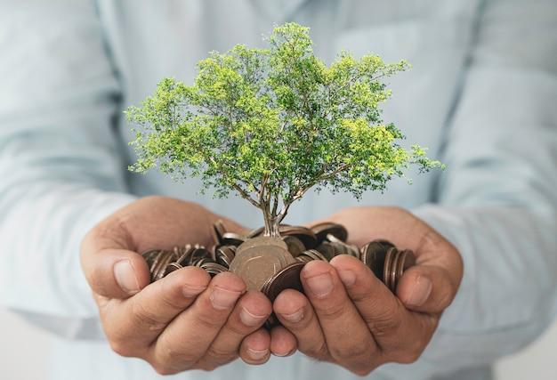 Biznesmen trzymając monety w ręku z drzewem wzrostu.