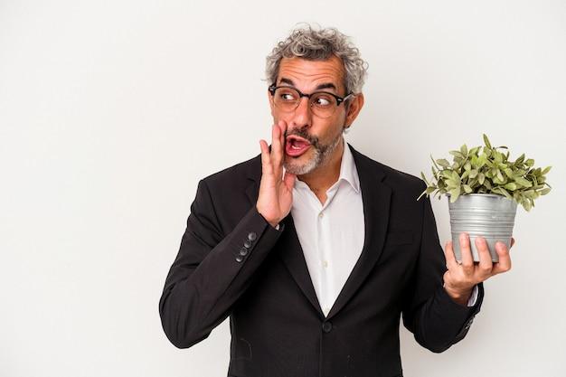 Biznesmen w średnim wieku trzymający roślinę na białym tle mówi tajne gorące wiadomości o hamowaniu i odwraca wzrok