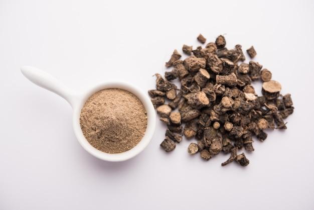 Black musli / moosli - curculigo orchioides to indyjskie zioło ajurwedyjskie, stosowane w leczeniu chorób nasienia, skóry i układu oddechowego
